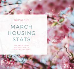 March 2019 Real Estate Market Looks More Like a Normal Spring Market