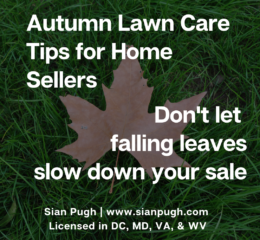 Fall Lawn Care Tips for Home Sellers